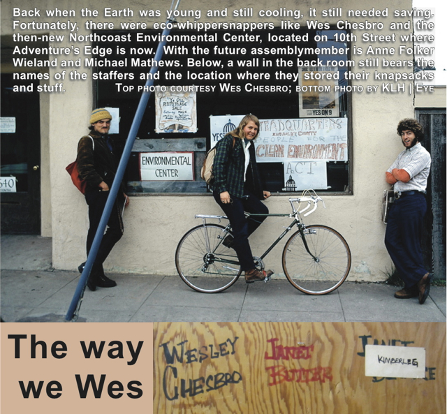 the-way-we-wes2