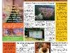 copy_22_frontpage