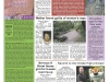 copy_54_frontpage