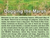 dogging-the-marsh