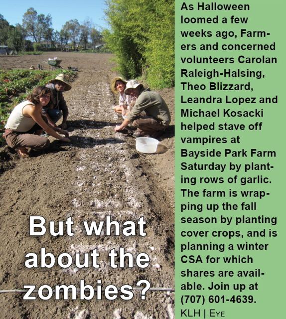 bayside-park-farm