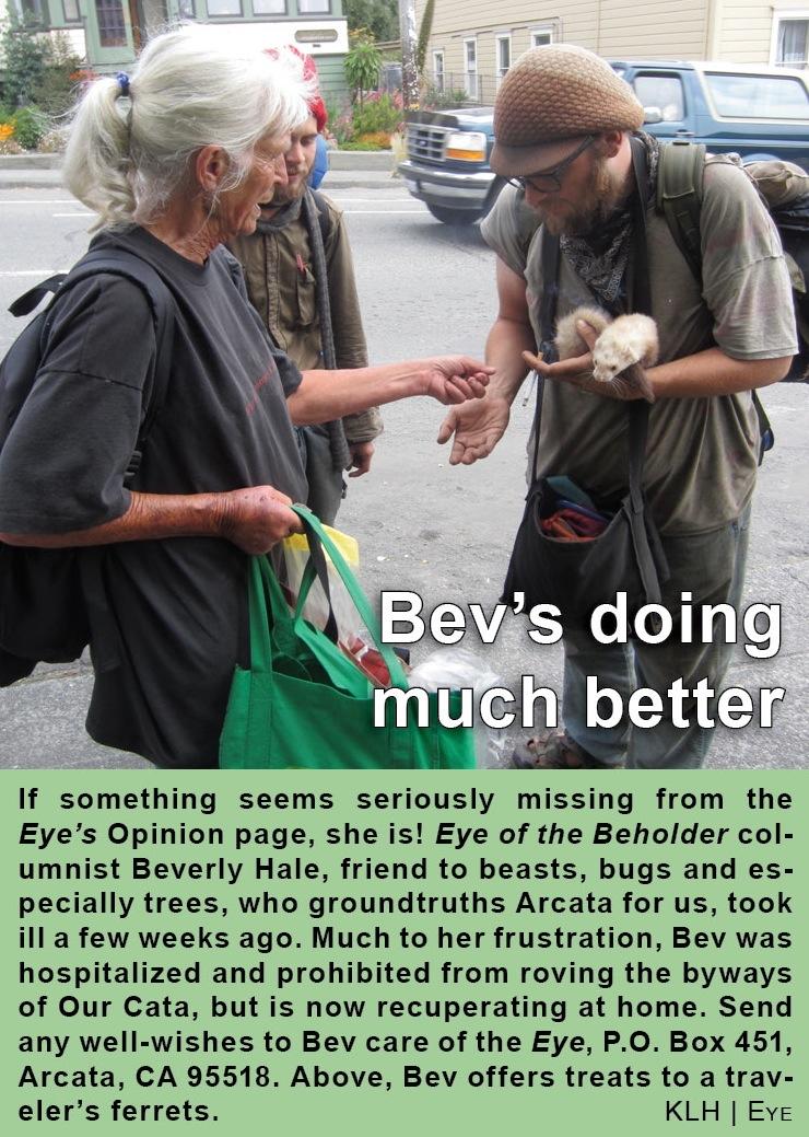 bevs-better