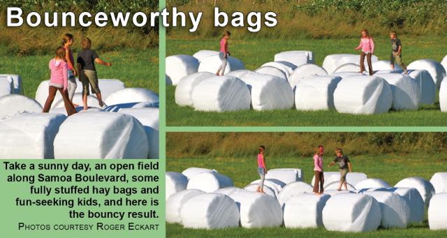 bounceworthy-bags