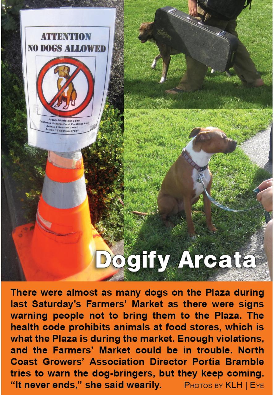 dogify-arcata
