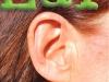 cutten-ear