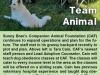 team-animal