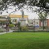 Plaza Halloween Mayhem: Consider The Alternatives – October 31, 2012