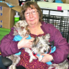 A Sweet Set Of Schnauzers – December 13, 2012