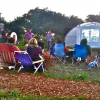 Flicks At Bayside Park Farm Saturday