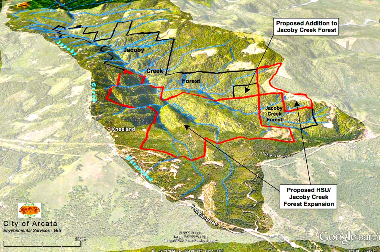 The proposed research forest next to the Jacoby Creek Forest. Image courtesy City of Arcata