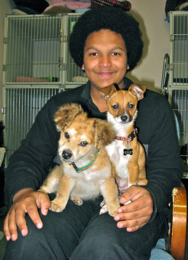 Joseph Nunn with Chica and Button.