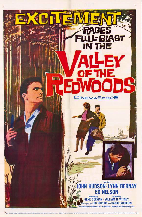 Valley poster