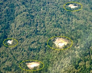 Aerial photos taken by Superivsor Mark Lovelace last year show cannabis-related clearcuts throughout remote wooded areas of Humbboldt County.