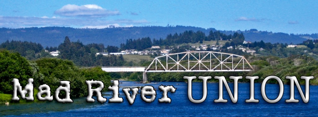 The Mad River Union's temporary logo.
