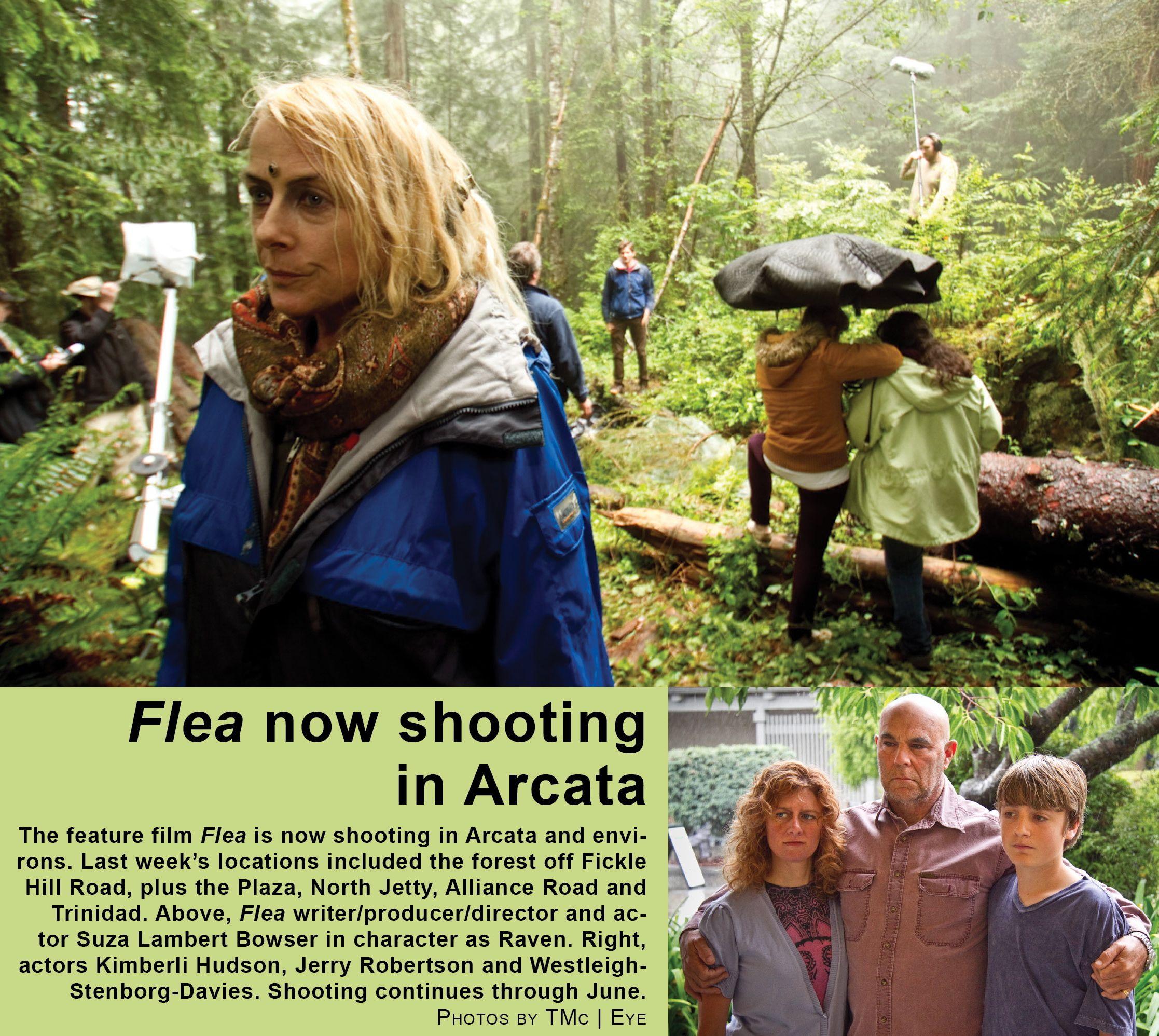 fleaforest