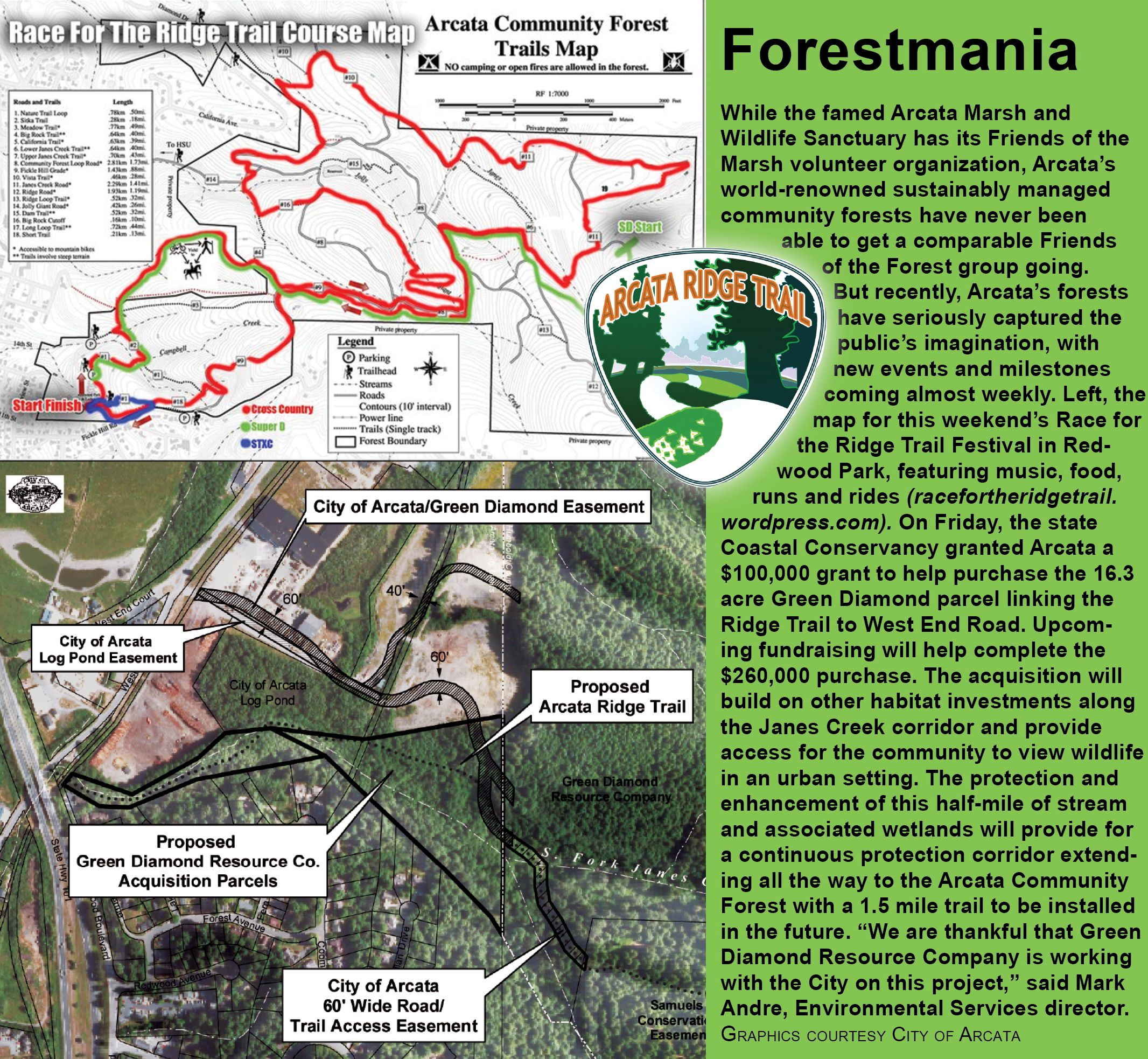 forestmania