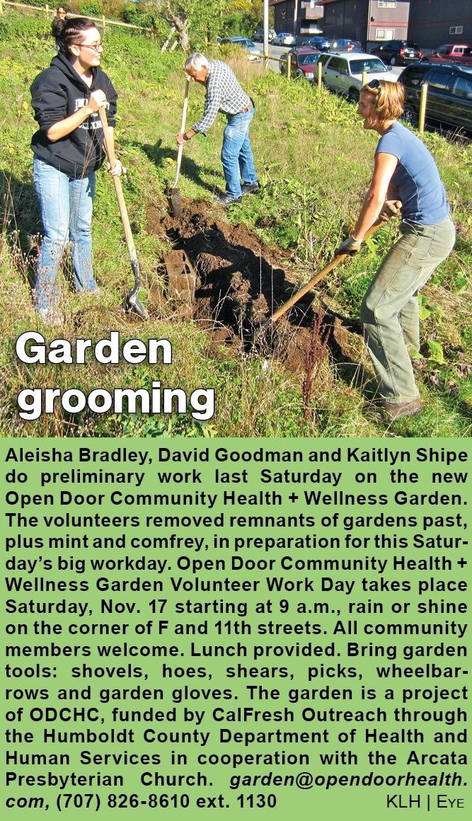 garden-grooming