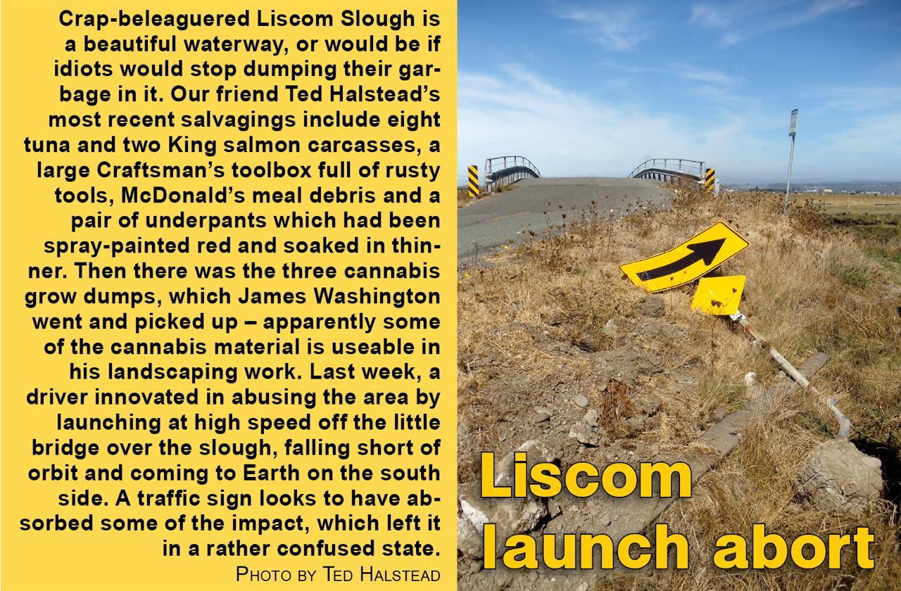 liscom-launch