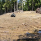 Brad Job: Rapacious Grows Destroy Habitat, Undo Restoration Work –January 29, 2012