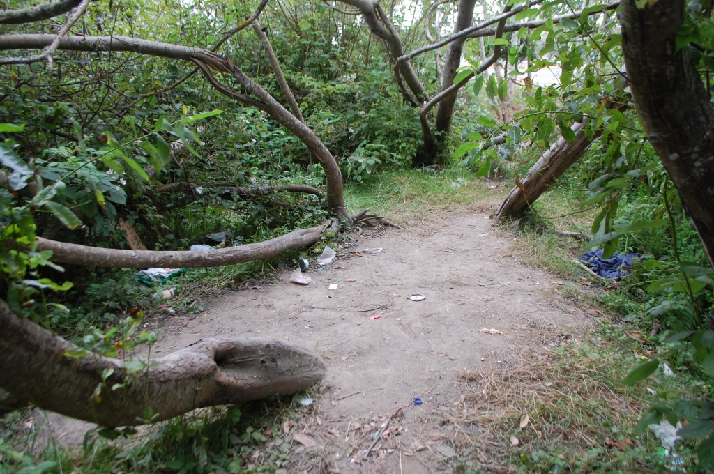 The clearing where rape suspect Kevin Scott Walker was detained by ball players, then arrested by APD. KLH | Eye